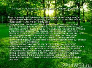 Пристосування до існування в наземно-повітряному середовищі в організмів виробил