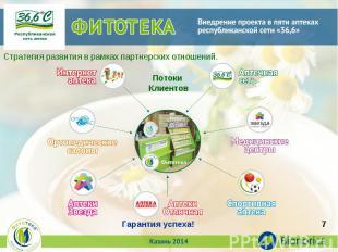 Стратегия развития в рамках партнерских отношений.