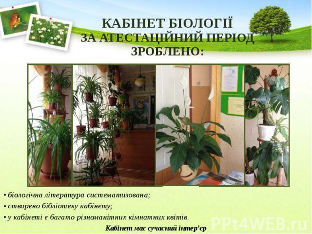 КАБІНЕТ БІОЛОГІЇ ЗА АТЕСТАЦІЙНИЙ ПЕРІОД ЗРОБЛЕНО: біологічна література систематизована; створено бібліотеку кабінету; у кабінеті є багато різноманітних кімнатних квітів. Кабінет має сучасний інтер'єр