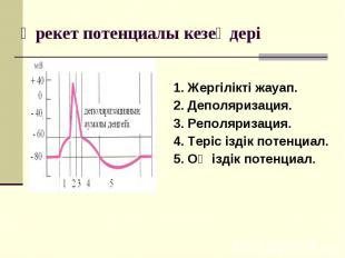 1. Жергілікті жауап. 2. Деполяризация. 3. Реполяризация. 4. Теріс іздік потенциа