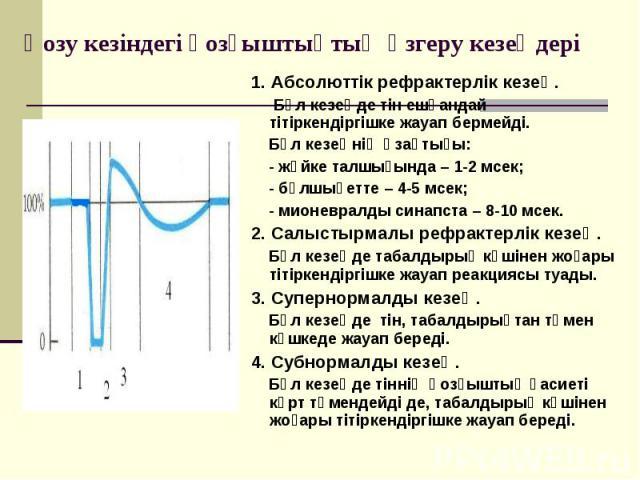 1. Абсолюттік рефрактерлік кезең. 1. Абсолюттік рефрактерлік кезең. Бұл кезеңде тін ешқандай тітіркендіргішке жауап бермейді. Бұл кезеңнің ұзақтығы: - жүйке талшығында – 1-2 мсек; - бұлшықетте – 4-5 мсек; - мионевралды синапста – 8-10 мсек. 2. Салыс…
