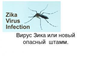 Вирус Зика или новый опасный штамм.