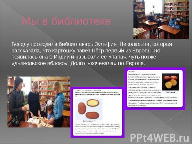 Мы в библиотеке Беседу проводила библиотекарь Зульфия Николаевна, которая рассказала, что картошку завез Пётр первый из Европы, но появилась она в Индии и называли её «папа», чуть позже «дьявольское яблоко». Долго «кочевала» по Европе.
