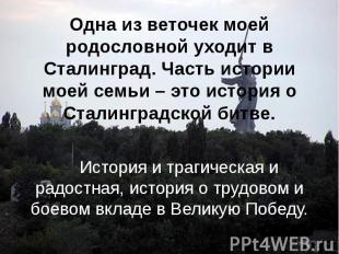 Одна из веточек моей родословной уходит в Сталинград. Часть истории моей семьи –