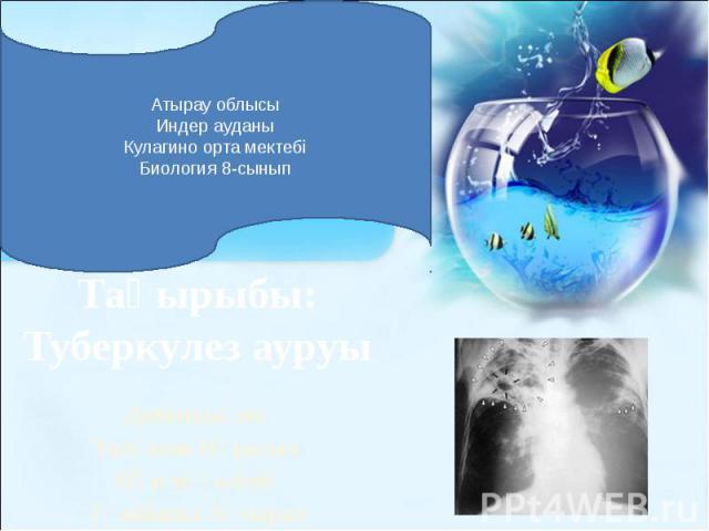 Тақырыбы: Туберкулез ауруы Дайындаған: Талғатов Нұрасыл Пән мұғалімі: Тәжібаева Ақмарал