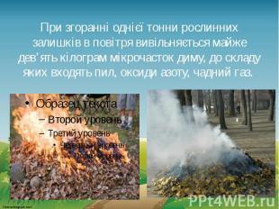 При згоранні однієї тонни рослинних залишків в повітря вивільняється майже дев'я