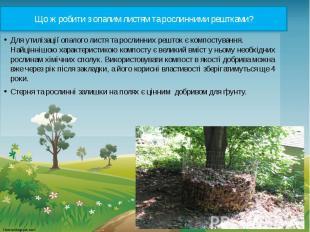 Що ж робити з опалим листям та рослинними рештками? Для утилізації опалого листя