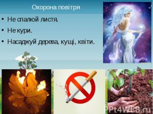 Охорона повітря Не спалюй листя. Не кури. Насаджуй дерева, кущі, квіти.
