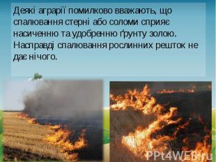Деякі аграрії помилково вважають, що спалювання стерні або соломи сприяє насичен