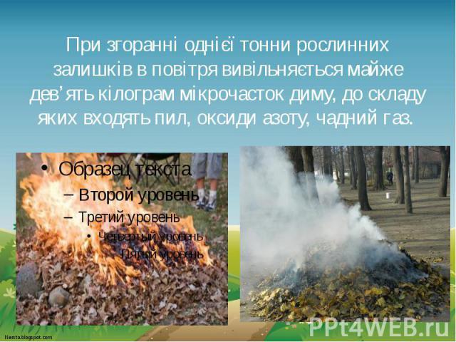 При згоранні однієї тонни рослинних залишків в повітря вивільняється майже дев'ять кілограм мікрочасток диму, до складу яких входять пил, оксиди азоту, чадний газ.