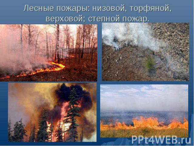 Лесные пожары: низовой, торфяной, верховой; степной пожар.