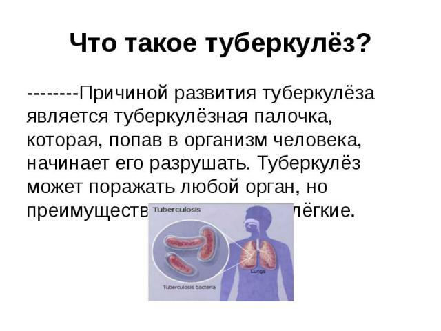 Что такое туберкулёз? Причиной развития туберкулёза является туберкулёзная палочка, которая, попав в организм человека, начинает его разрушать. Туберкулёз может поражать любой орган, но преимущественно поражае…