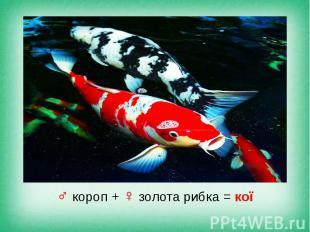 ♂ короп + ♀ золота рибка = кої