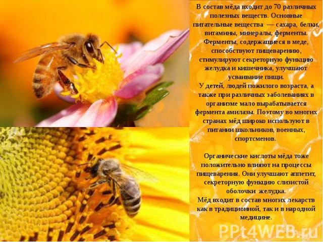 В состав мёда входит до 70 различных полезных веществ. Основные питательные вещества — сахара, белки, витамины, минералы, ферменты. Ферменты, содержащиеся в меде, способствуют пищеварению, стимулируют секреторную функцию желудка и кишечника, у…