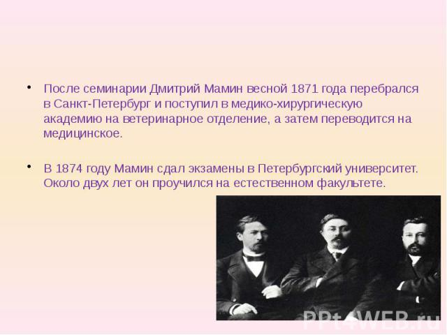После семинарии Дмитрий Мамин весной 1871 года перебрался в Санкт-Петербург и поступил в медико-хирургическую академию на ветеринарное отделение, а затем переводится на медицинское. В 1874 году Мамин сдал экзамены в Петербургский университет. Около …