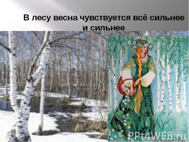 В лесу весна чувствуется всё сильнее и сильнее