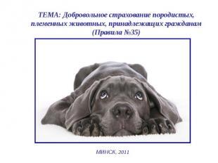 ТЕМА: Добровольное страхование породистых, племенных животных, принадлежащих гра
