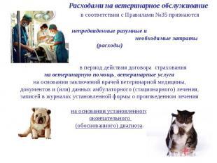 Расходами на ветеринарное обслуживание в соответствии с Правилами №35 признаются