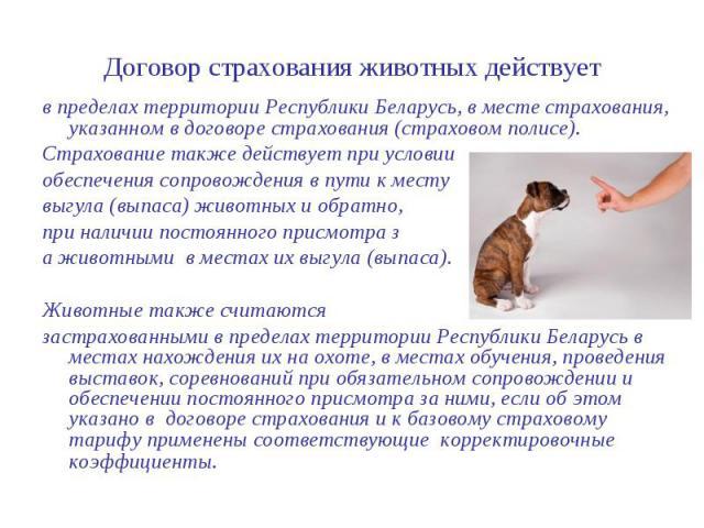Договор страхования животных действует в пределах территории Республики Беларусь, в месте страхования, указанном в договоре страхования (страховом полисе). Страхование также действует при условии обеспечения сопровождения в пути к месту выгула (выпа…
