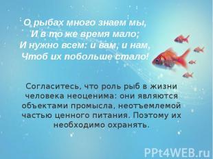 Согласитесь, что роль рыб в жизни человека неоценима: они являются объектами про