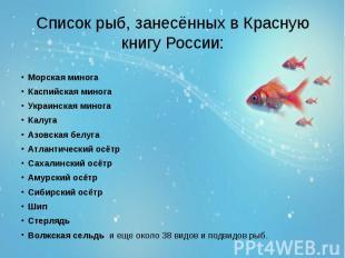 Список рыб, занесённых в Красную книгу России: Морская минога Каспийская минога