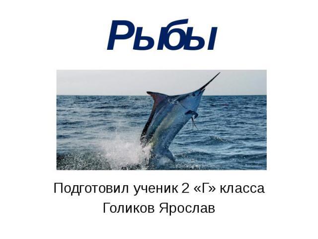 Рыбы Подготовил ученик 2 «Г» класса Голиков Ярослав