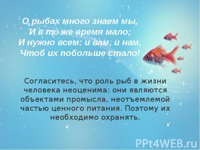 Согласитесь, что роль рыб в жизни человека неоценима: они являются объектами промысла, неотъемлемой частью ценного питания. Поэтому их необходимо охранять. Согласитесь, что роль рыб в жизни человека неоценима: они являются объектами промысла, неотъе…