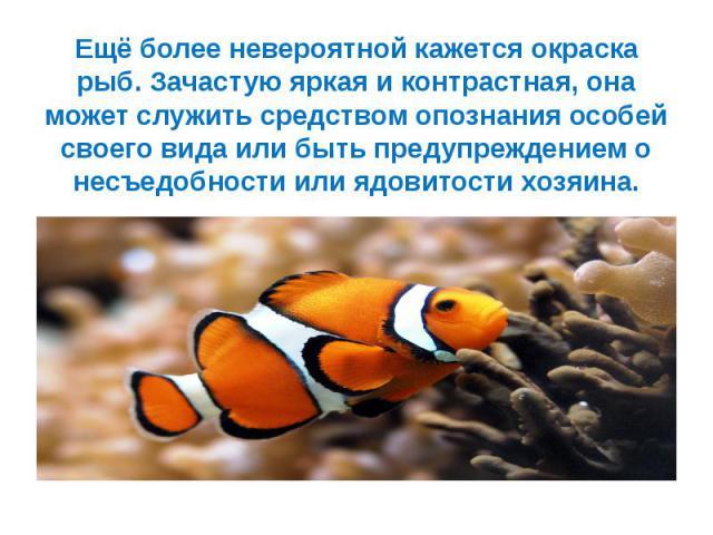 Ещё более невероятной кажется окраска рыб. Зачастую яркая и контрастная, она может служить средством опознания особей своего вида или быть предупреждением о несъедобности или ядовитости хозяина.