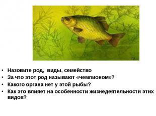 Назовите род, виды, семейство За что этот род называют «чемпионом»? Какого орган