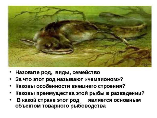 Назовите род, виды, семейство За что этот род называют «чемпионом»? Каковы особенности внешнего строения? Каковы преимущества этой рыбы в разведении? В какой стране этот род  является основным объектом товарного рыбоводства &…