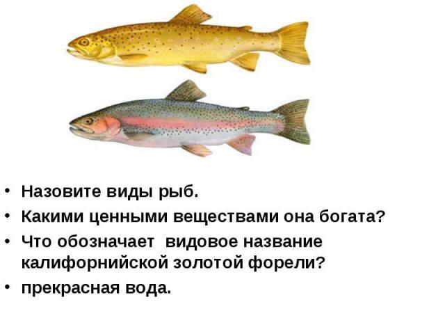 Назовите виды рыб. Какими ценными веществами она богата? Что обозначает видовое название калифорнийской золотой форели? прекрасная вода.