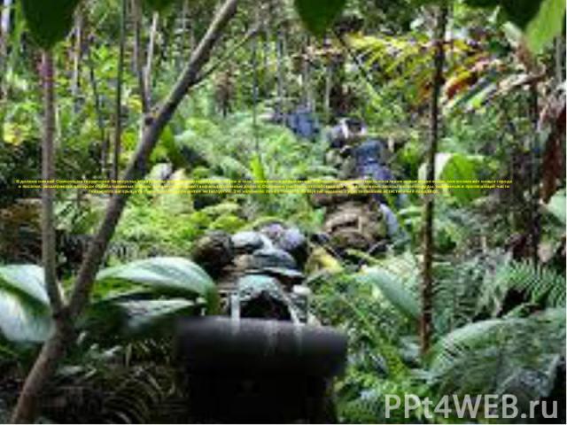 В долине нижней Ориноко, на территории Венесуэлы, обнаружены крупные месторождения нефти и газа, развивается добывающая промышленность, плотность населения значительно выше, там возникают новые города и поселки, расширяются площади обрабатываемых зе…