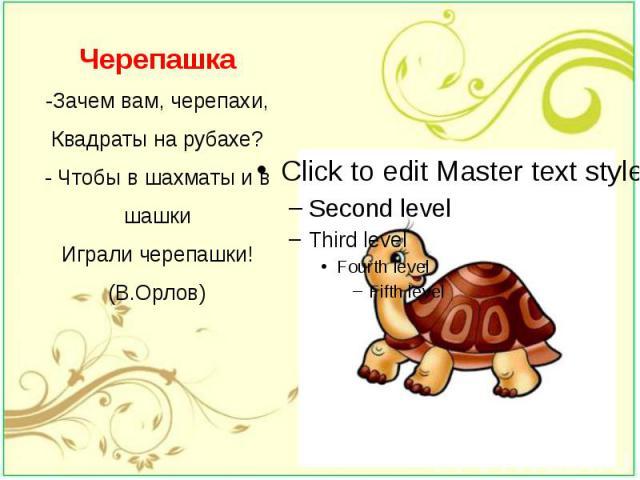 Черепашка -Зачем вам, черепахи, Квадраты на рубахе? - Чтобы в шахматы и в шашки Играли черепашки! (В.Орлов)