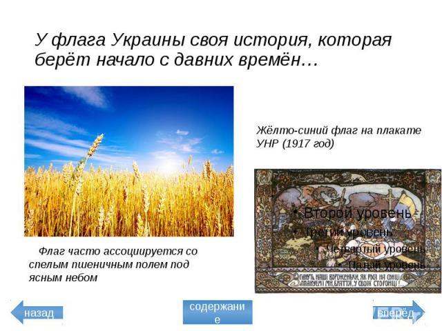 У флага Украины своя история, которая берёт начало с давних времён… Флаг часто ассоциируется со спелым пшеничным полем под ясным небом