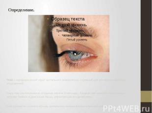 Определение. Глаз – периферический отдел зрительного анализатора, служащий для в