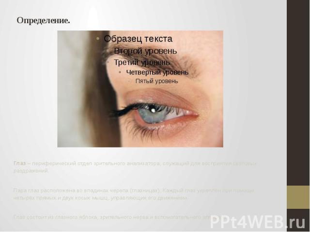 Определение. Глаз – периферический отдел зрительного анализатора, служащий для восприятия световых раздражений. Пара глаз расположена во впадинах черепа (глазницах). Каждый глаз укреплён при помощи четырёх прямых и двух косых мышц, управляющих его д…