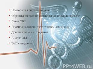 Проводящая система сердца Проводящая система сердца Образование зубцов и интерва