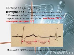 Интервал Q-T (QRST) Интервал Q-T измеряется от начала комплекса QRS до конца зуб