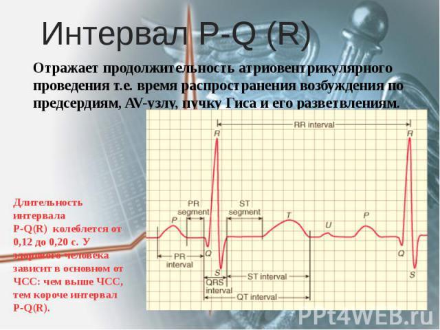 Интервал Р-Q (R) Отражает продолжительность атриовентрикулярного проведения т.е. время распространения возбуждения по предсердиям, AV-узлу, пучку Гиса и его разветвлениям.
