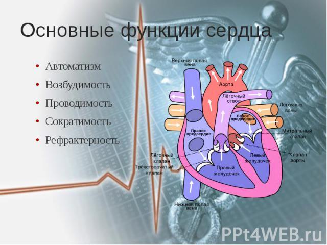 Основные функции сердца Автоматизм Возбудимость Проводимость Сократимость Рефрактерность