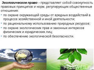 Экологическое право-представляет собой совокупность правовых принцип