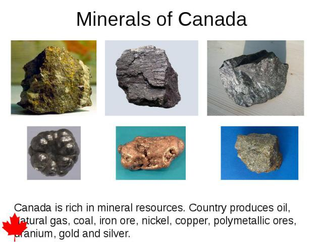 Minerals of Canada Canada is rich in mineral resources. Country produces oil, natural gas, coal, iron ore, nickel, copper, polymetallic ores, uranium, gold and silver.