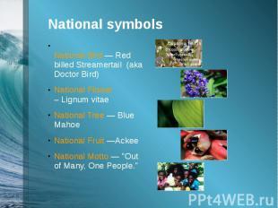 National symbolsNational Bird —Red billed Streamertail (aka Doctor B