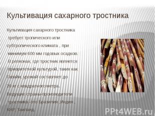 Культивация сахарного тростника Культивация сахарного тростника требуеттро