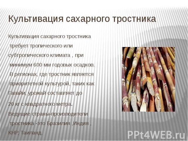 Культивация сахарного тростника Культивация сахарного тростника требуеттропического или субтропическогоклимата , при минимум 600мм годовых осадков. В регионах, где тростник является приоритетной культурой, таких к…