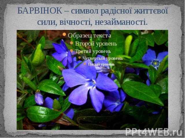 БАРВІНОК – символ радісної життєвої сили, вічності, незайманості.