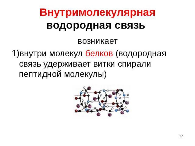 возникает возникает 1)внутри молекул белков (водородная связь удерживает витки спирали пептидной молекулы)