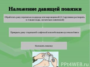 Наложение давящей повязкиОбработать рану перекисью водорода или марганцовкой (2-