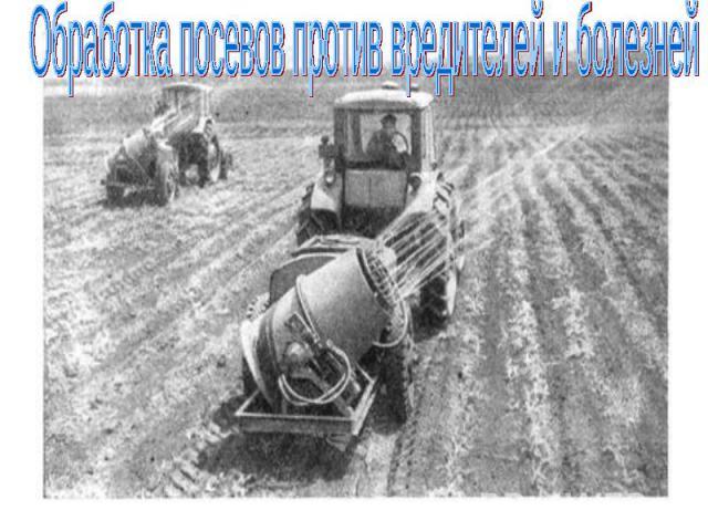 Обработка посевов против вредителей и болезней