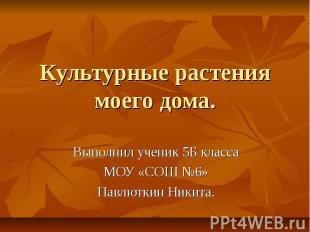 Культурные растения моего дома Выполнил ученик 5 Б класса МОУ «СОШ №6» Павлюткин